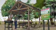 В Эльтавском лесу будет создана зона для пикника
